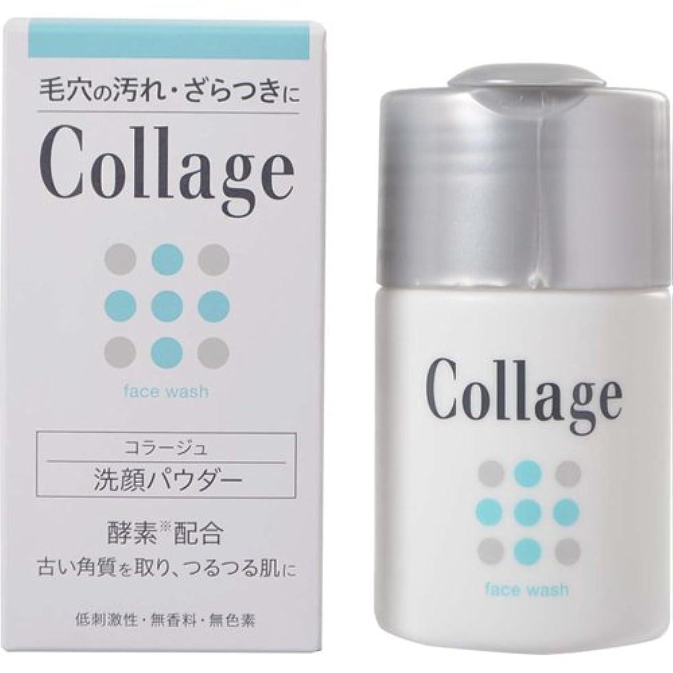 志すカレッジ発明コラージュ 洗顔パウダー 40g