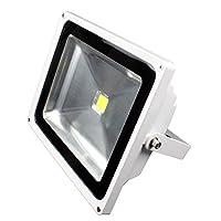 Lunasea Outdoor LED Flood Light - 85-265VAC/50W/4500 Lumens - Cool White [並行輸入品]