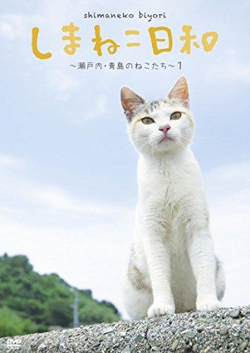 テレビ愛媛45周年記念 しまねこ日和 ~瀬戸内・青島のねこたち~ 1 [DVD]