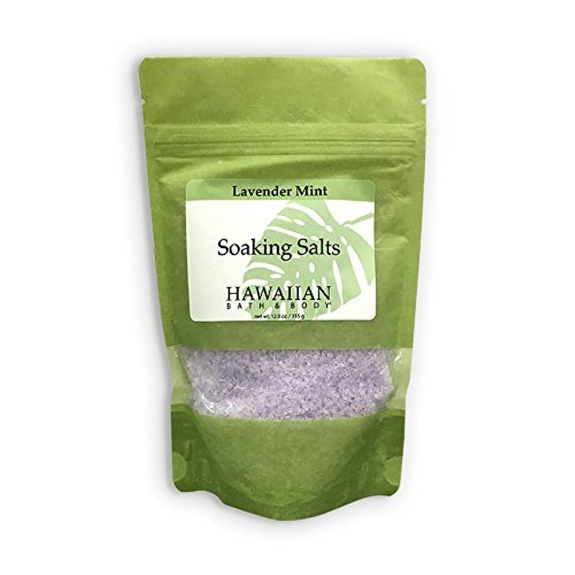 動かす完全に乾く便益ハワイアンバス&ボディ ラベンダーミント?バスソルト ( Lavender Mint Bath Salt )