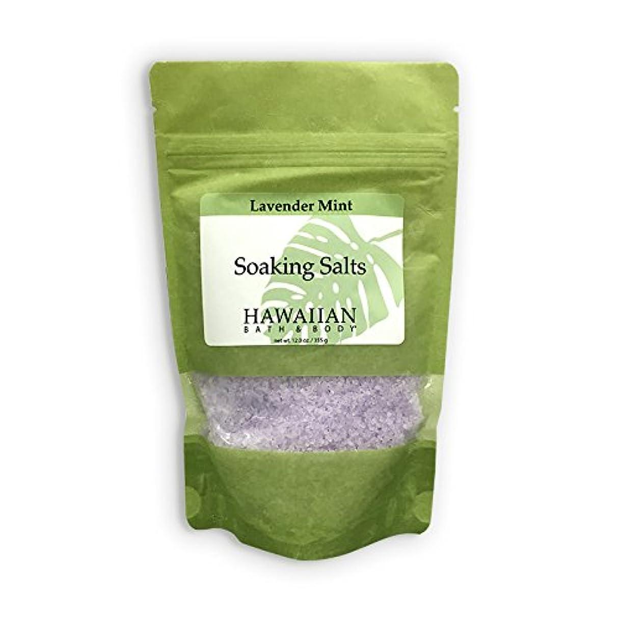 ヒューズブレス優勢ハワイアンバス&ボディ ラベンダーミント?バスソルト ( Lavender Mint Bath Salt )