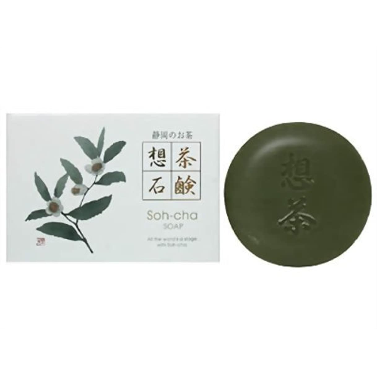 カーフ耐えられない専門用語静岡茶粉末入 想茶石鹸