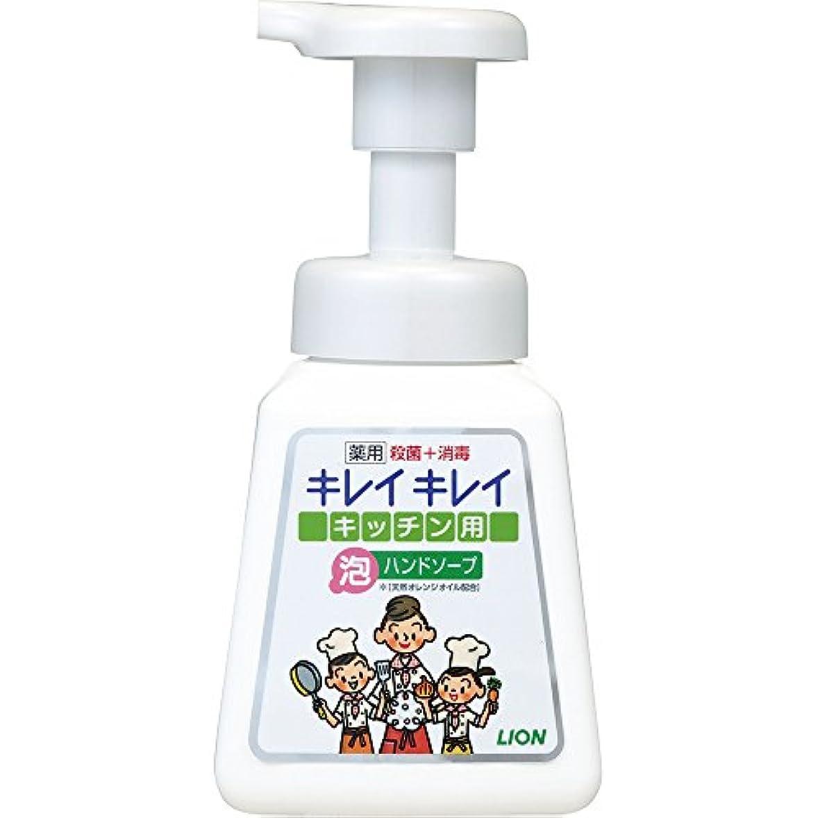 風変わりな精神猛烈なキレイキレイ 薬用 キッチン泡ハンドソープ 本体ポンプ 230ml(医薬部外品)