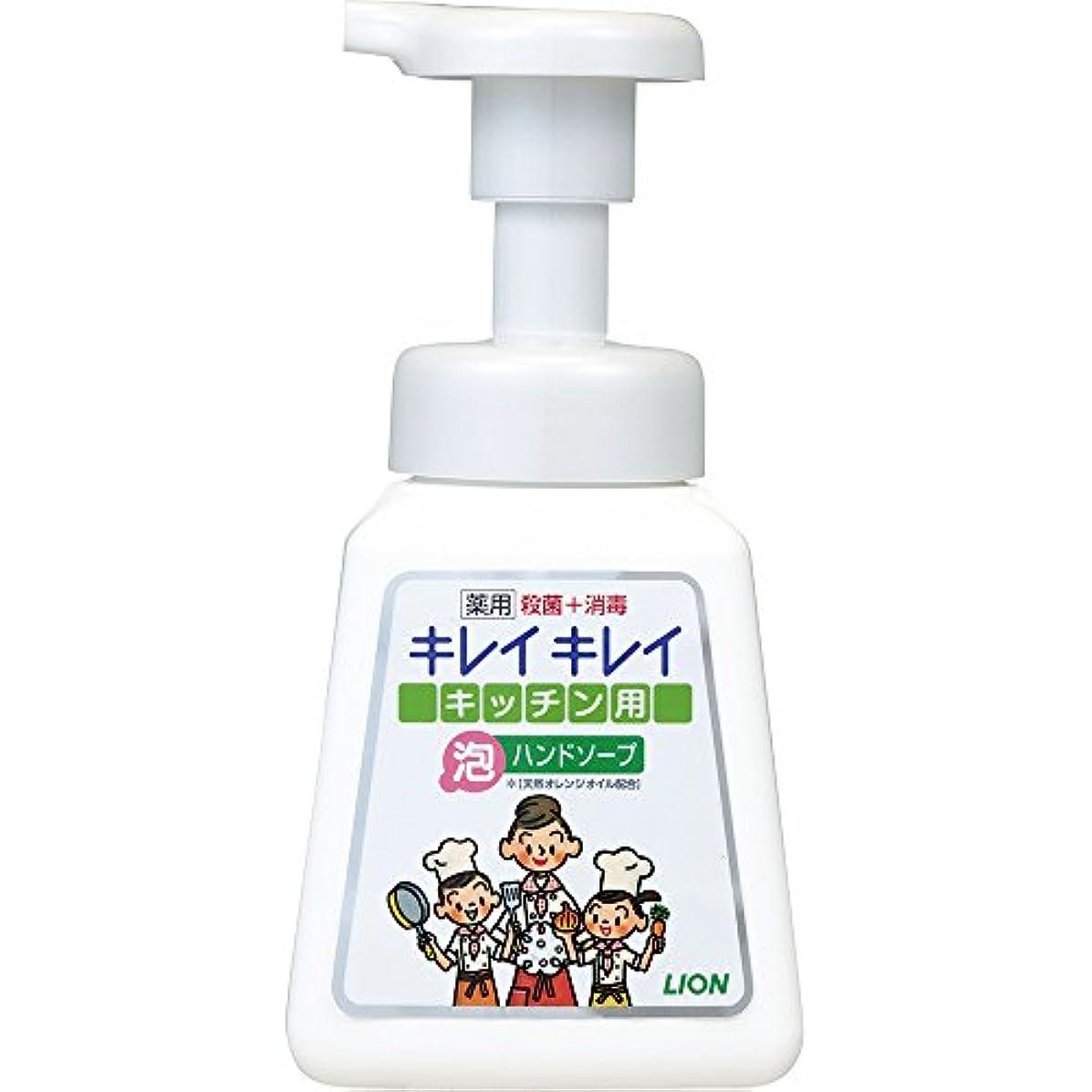 適度な日食雄弁なキレイキレイ 薬用 キッチン泡ハンドソープ 本体ポンプ 230ml(医薬部外品)