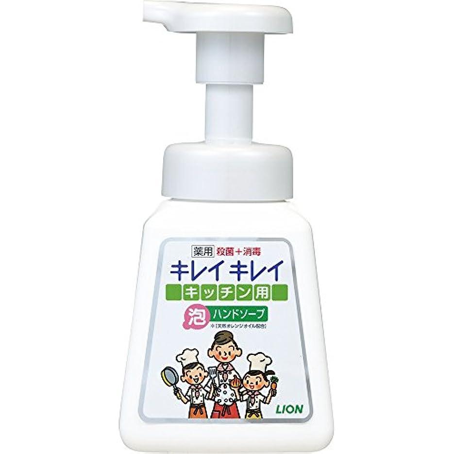 シーケンス初期の時間キレイキレイ 薬用 キッチン泡ハンドソープ 本体ポンプ 230ml(医薬部外品)