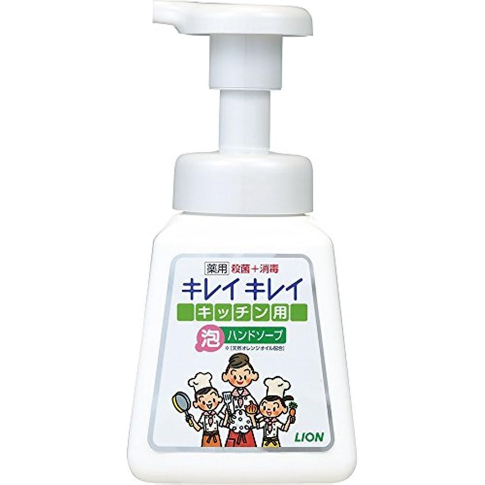香水機構破滅的なキレイキレイ 薬用 キッチン泡ハンドソープ 本体ポンプ 230ml(医薬部外品)