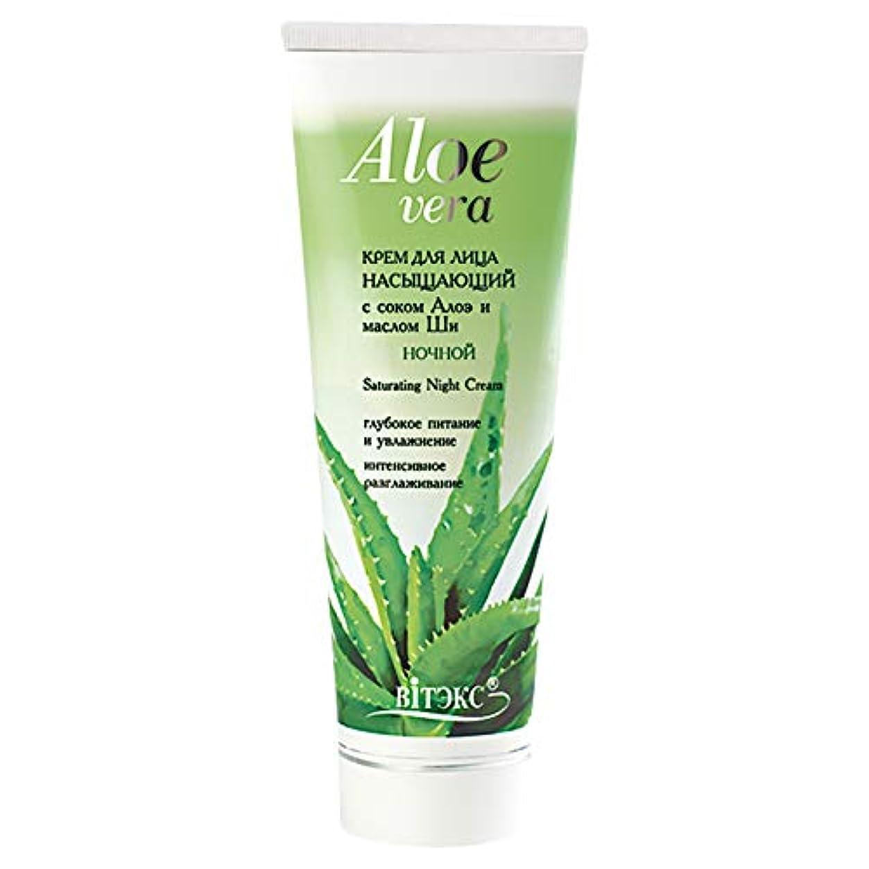 トチの実の木ビジターへこみBielita & Vitex | Aloe Vera Line | Saturating Face Night Cream 30+ for All Skin Types | Shea Butter | Aloe Juice...