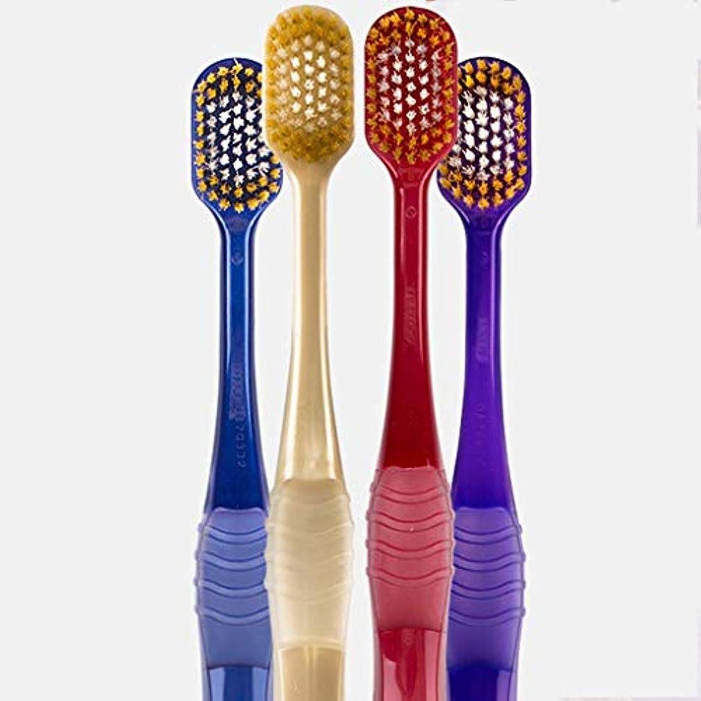 説得教育学連鎖超柔らかい歯ブラシ、大人家庭用歯ブラシ、4パック(ランダムカラー)