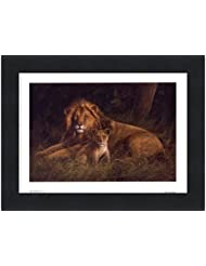 Lion and Cub by Kilian – 8 x 6インチ – アートプリントポスター LE_66922-F101-8x6