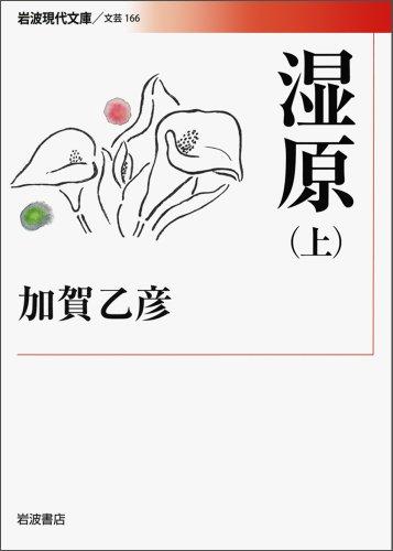 湿原(上) (岩波現代文庫)