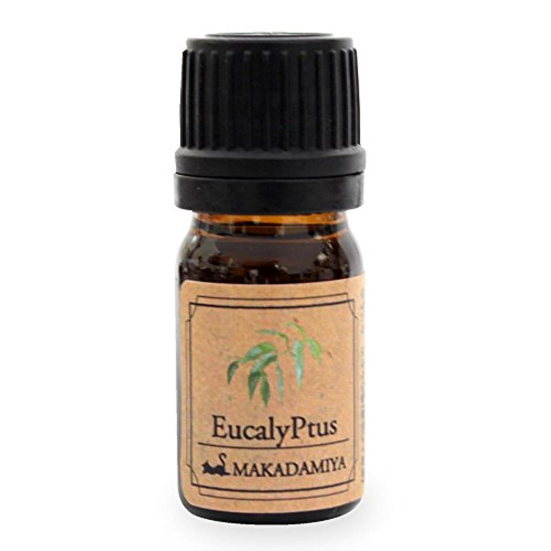 留まるリーフレット透けて見えるユーカリ5ml 天然100%植物性 エッセンシャルオイル(精油) アロマオイル アロママッサージ aroma Eucalyptus