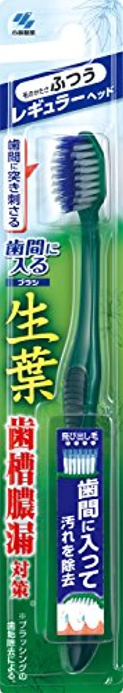 縮れたフォルダ水銀の生葉(しょうよう)歯間に入るブラシ 歯ブラシ レギュラー ふつう