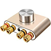Bluetoothアンプ ELEGIANT ステレオ スピーカー パワーアンプ デジタルアンプ ベース 増幅器 HI-FI 音質 100W 大出力 超小型