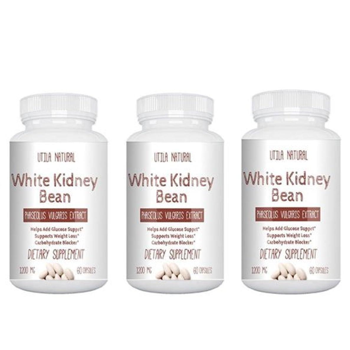 ハードウェア運営記者お得な3個セット! 白いんげん豆サプリ ホワイトキドニービーン抽出液  600mg 60ベジタブルカプセル White Kidney Bean [並行輸入品]