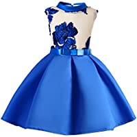 Prettyia Flower Girl Dress Chic Delicate Flowers Embroidery Bow Kid Wedding Bridesmaid Birthday Pageant Sleeveless Dresses 3-10 Years 6 Sizes