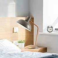 HLJ ノルディッククリエイティブベッドルームベッドサイドランプデスクレッスン学習LEDデスクランプ (Color : Gray)