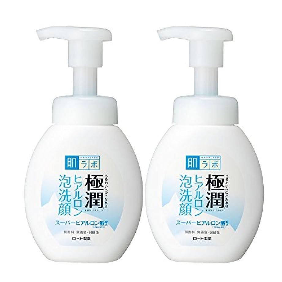 自治安価なラウズ肌ラボ 極潤ヒアルロン泡洗顔160mL×2個