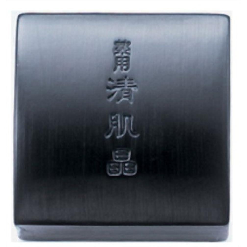 桁召集する思想コーセー 薬用 清肌晶 120g