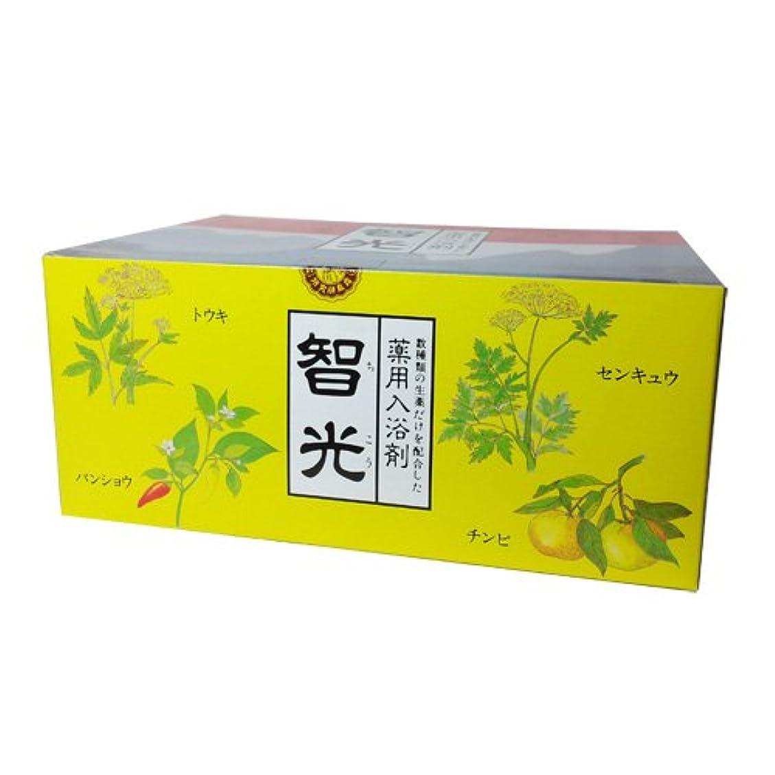 ナンセンスペンダントこどもの日智光 25g×10包×2箱セット