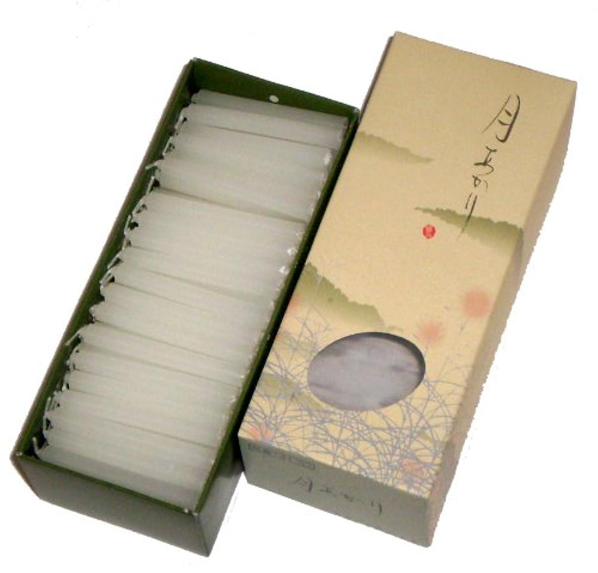 木製本質的に学ぶ東海製蝋のろうそく 月あかり 20分約160本
