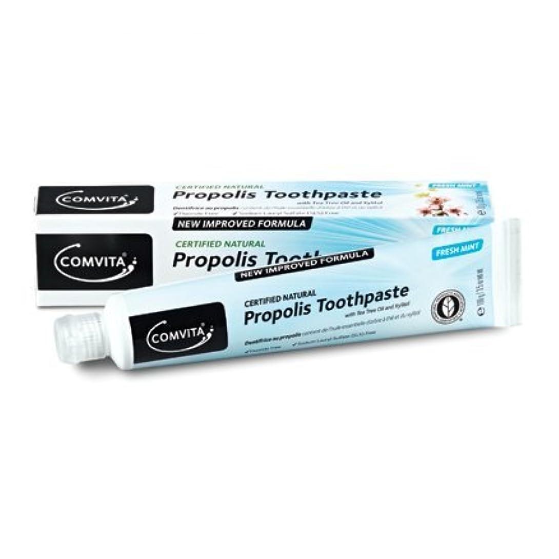 パノラマ浸食一時解雇する100% ナチュラル プロポリス 歯磨き粉 PROPOLIS TOOTHPASTE 100g [並行輸入品]