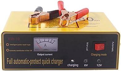 RaiFu バッテリー充電器 チャージャー プロ 140W 自動保護  6V / 12V 80AH 自動 インテリジェント カーバッテリーチャージャー