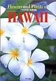 ハワイの花と熱帯植物 画像