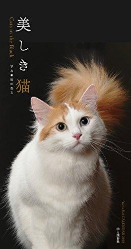 カレンダー2019 美しき猫 Cats in the Black (ヤマケイカレンダー2019)