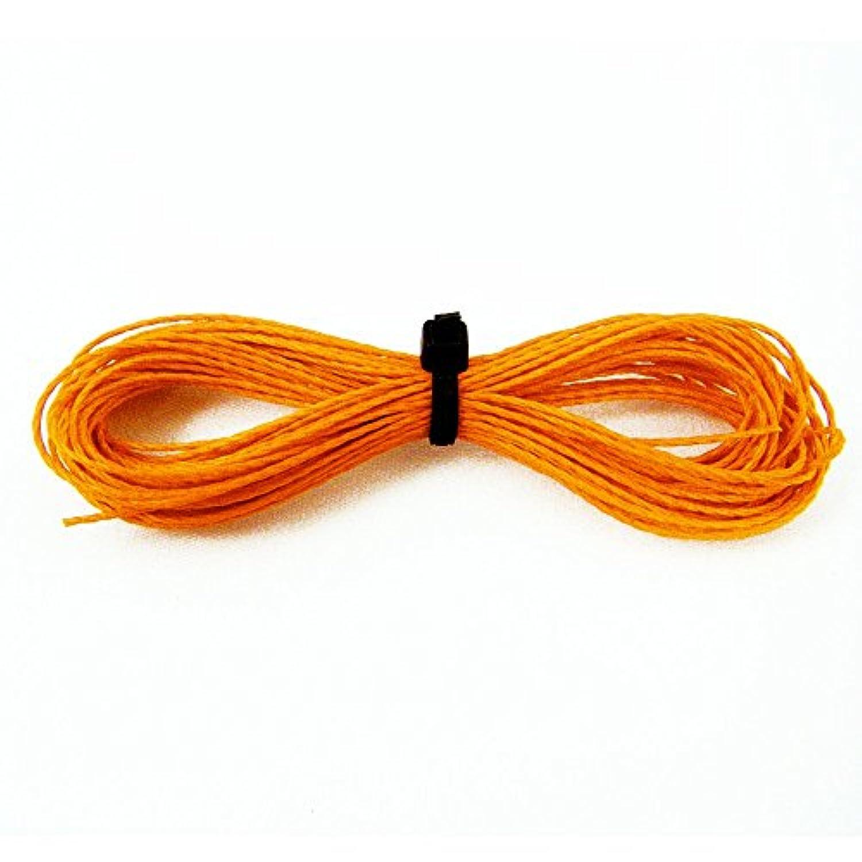 ASRアウトドアKevlarスポーツライン/ Kite Line ( 500 ft )オレンジ
