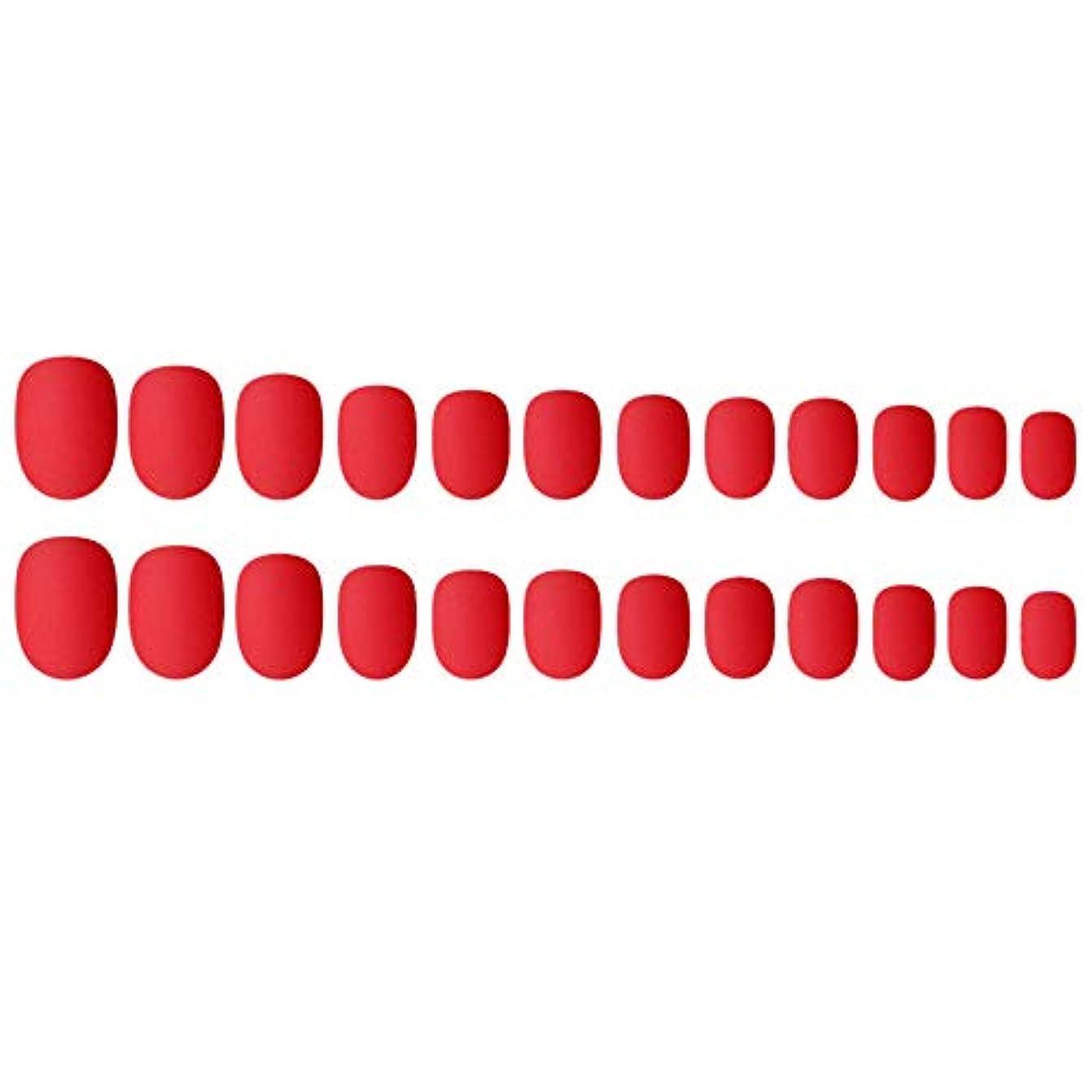 やりがいのある欠席オセアニアDecdeal ネイルチップ 24ピース 偽ネイルのヒント 12種類のサイズ ネイルサロン diy ネイルアートツール