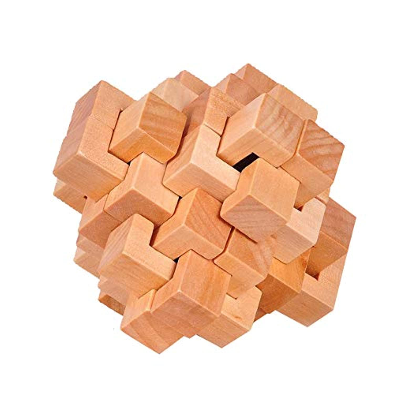 Naisidier 木製パズルゲーム Kongming Lock ミステリアスキューブトイ 脳の体操 IQ玩具 子供 大人用 (24錠)