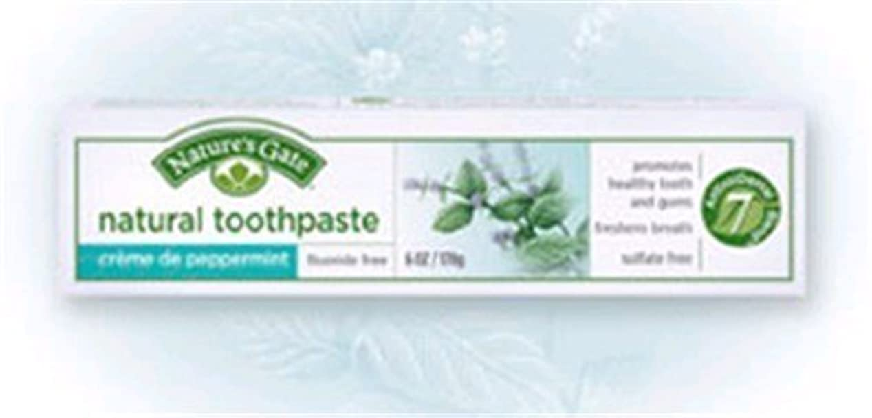 無人シャッターバッフルCreme de Peppermint Natural Toothpaste 6 Ounces by Nature's Gate [並行輸入品]