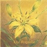 Lily / Dragon Ash