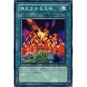 遊戯王カード 【燃えさかる大地】 BE1-JP177-N 《ビギナーズエディション1》
