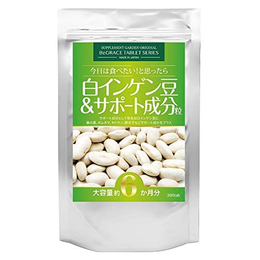 博物館高度区白インゲン豆&サポート成分粒 大容量約6ヶ月分/360粒(白インゲン豆?桑の葉?ギムネマ?キトサン?唐辛子)