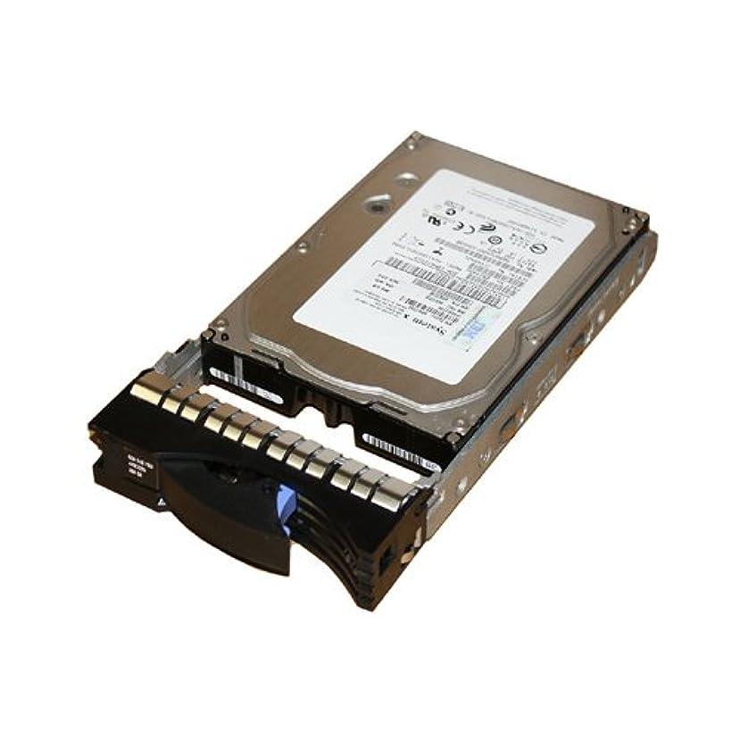 経営者コンテンポラリー口ひげIBM HDD 300GB SAS 3.5'' 15K SL HS 6GBPS