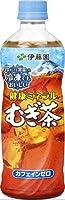 伊藤園 健康ミネラルむぎ茶 冷凍ボトル 485ml ペットボトル 48本 (24本入×2まとめ買い)