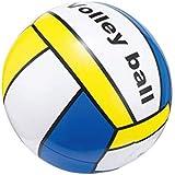ビーチボール 50cm バレーボール