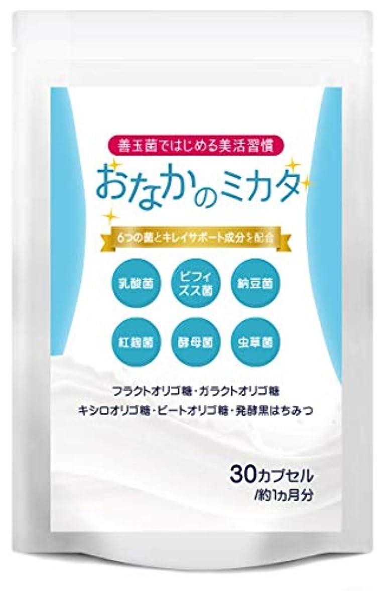 奨励します防ぐ刺激するおなかのミカタ 乳酸菌 ビフィズス菌 サプリメント オリゴ糖 葉酸 全6種類 善玉菌 配合