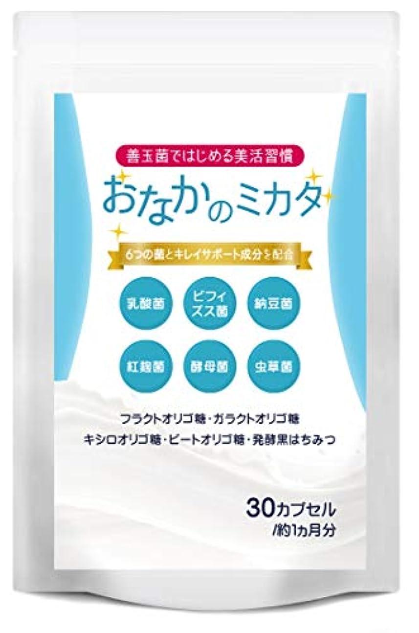 チラチラする禁じるリテラシーおなかのミカタ 乳酸菌 ビフィズス菌 サプリメント オリゴ糖 葉酸 全6種類 善玉菌 配合