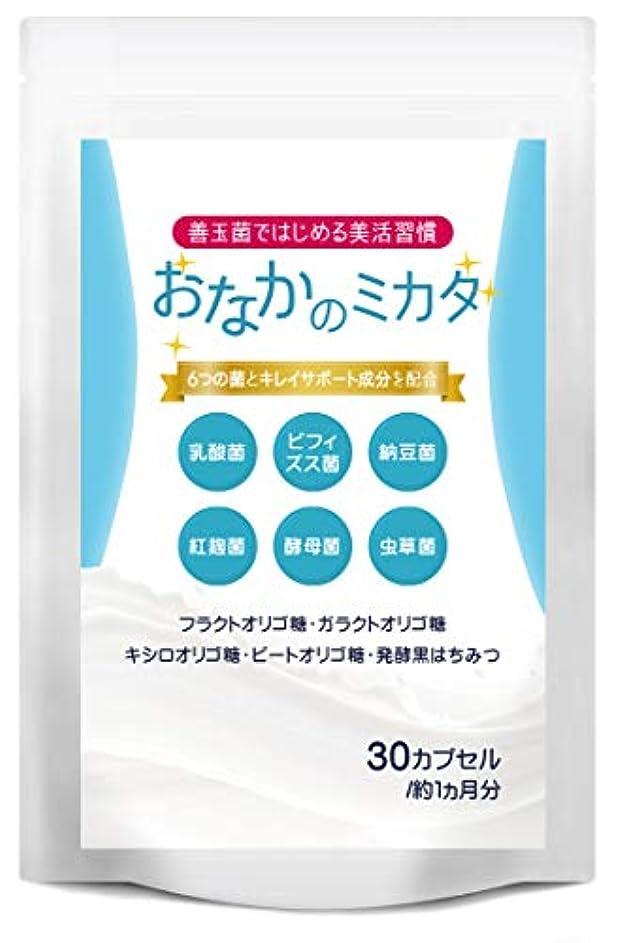 暴力目を覚ますにやにやおなかのミカタ 乳酸菌 ビフィズス菌 サプリメント オリゴ糖 葉酸 全6種類 善玉菌 配合
