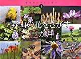 野山の花をさがす12か月 (生きものカレンダー)