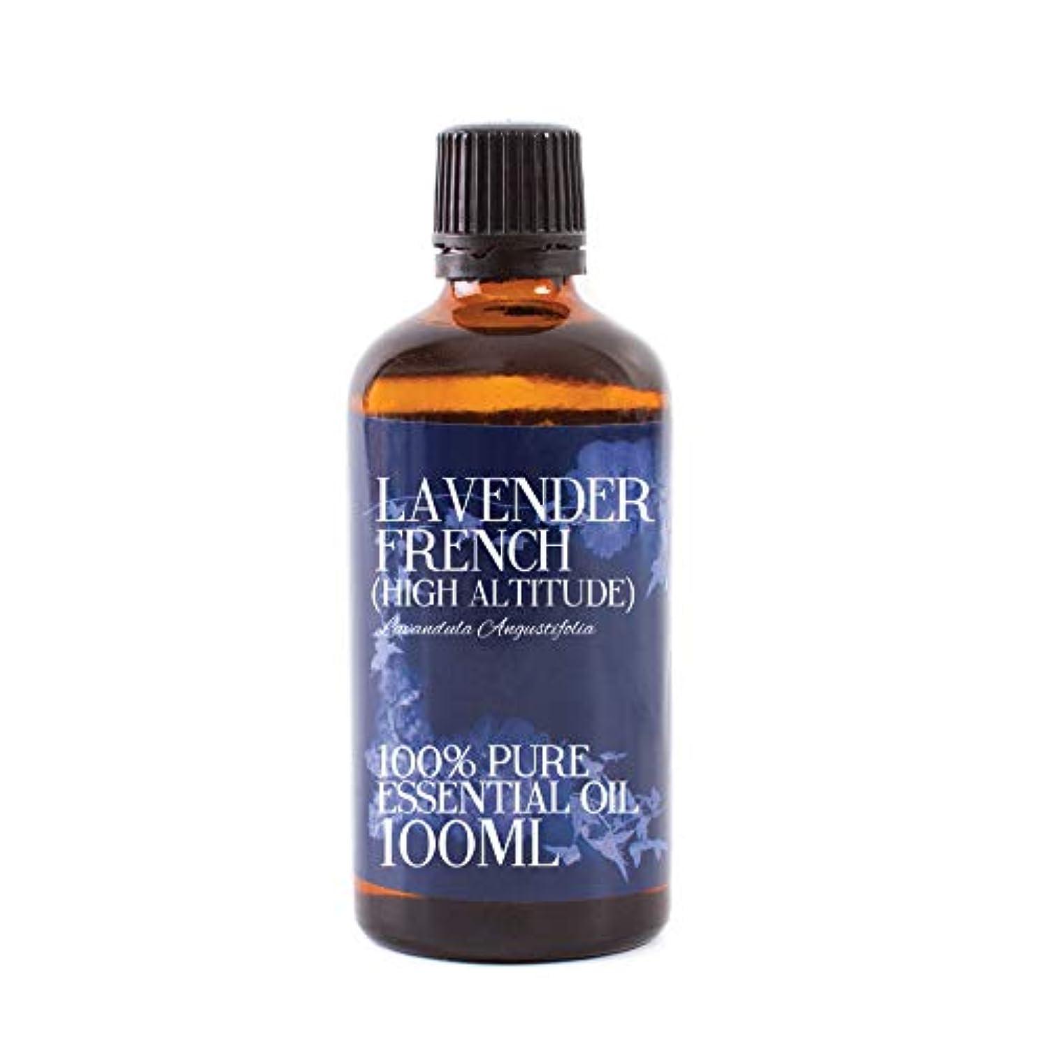 カウンタ余韻第四Mystic Moments | Lavender French (High Altitude) Essential Oil - 100ml - 100% Pure