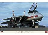 ハセガワ F-14A トムキャット VF-1 ウルフパック 1/48 09917