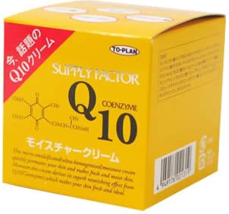 不利花束後方にTO-PLAN(トプラン) Q10モイスチャークリーム 110g