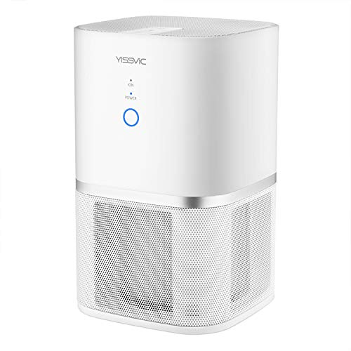 空気清浄機 15畳YISSVIC脱臭機 イオン発生器 小型 静音 タバコ 花粉・PM2.5省エネ 小型で軽量 旅行用 出張用 家庭用【24ヶ月保証】