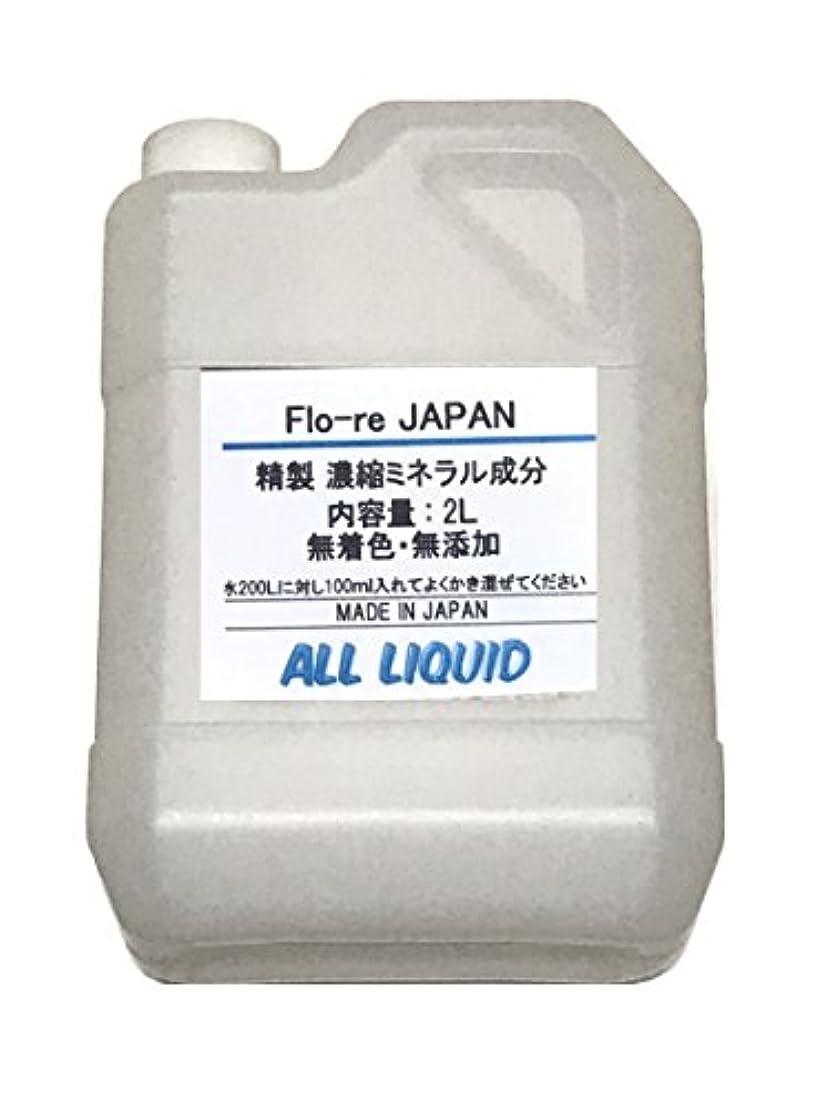 抑止する甘味アイスクリーム純 温泉成分 ミネラルの素 2L (20回分)
