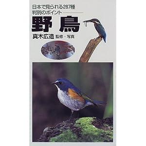 野鳥―日本で見られる287種判別のポイント