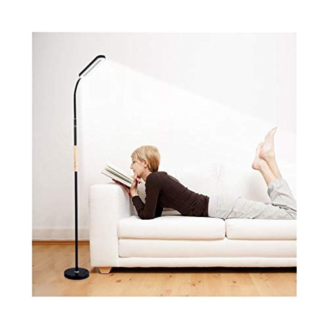 伸ばすイベント歌手北欧のファッションLEDフロアランプ、リビングルームベッドルームベッドサイドスタディオフィス垂直眼の保護ランプに適し W02/06