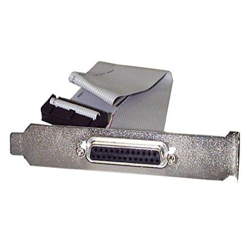 StarTech 40cm マザーボードピンヘッダー接続パラレル(LPT)ポート増設ケーブル PLATE25F16 1個